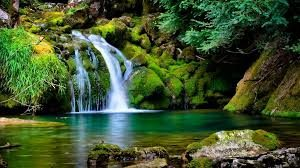 nature hd image free