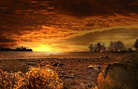 nature hd image
